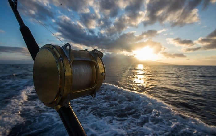 Deep Sea Fishing Reel on a boat during sunrise catching Tuna. While everyone knows mercury is found in Tuna and in metal fillings for your cavities, little is known exactly how much mercury leaks into your body.